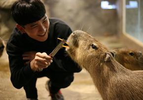 首尔THE ZOO室内动物园