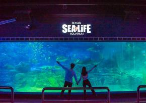 SEA LIFE 釜山水族馆