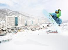 """江原道""""大明維瓦爾第公園滑雪場"""""""