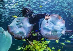 COEX水族馆